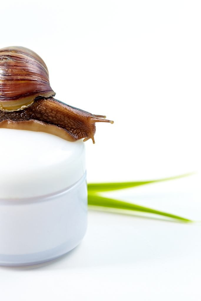 Korean cosmetics: snail slime cream for the wrinkles, scars and acne